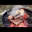 E2SLT grill lap